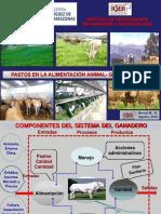 PASTOS- Congreso de Agronomia- GRA.ppt