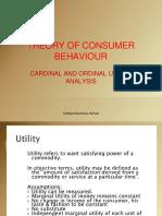Cardinal and Ordinal Analysis
