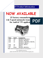 ZFAudiProgram.pdf