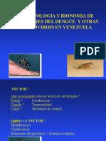 Clase Dengue Aedes Aegupti y Albopictus Clase