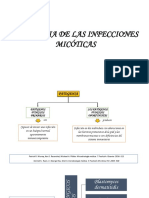 Patogenia de La Micosis