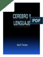 Ferreres Cerebro y Lenguaje 2014