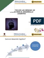 dimension cognitiva - lectura U sabana.pdf