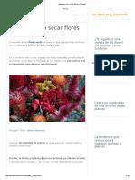 Métodos Para Secar Flores _ Plantas