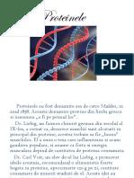 Proteinele.pptx
