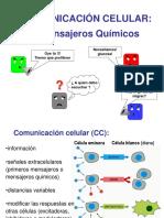 Comceeeceunicacion Celular