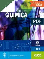 MAESTRIA-QUIMICA.pdf