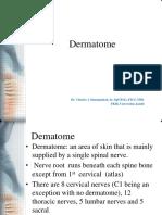 Dermatome Tubuh