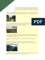Biomas de Chile