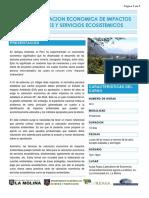 VALORACION_ECONOMICA_IMPACTOS_AMBIENTALES.pdf