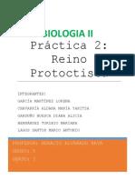PROTOCTISTAS-MARCO.docx