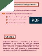 Evaluación de La Eficiencia Reproductiva