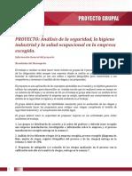 Instructivo proyecto grupal.pdf