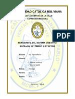 Monografia Sistema Digestivo Esofago Estomago e Intestino