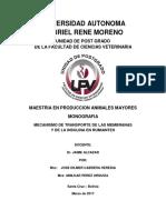 Monografia de Menbrana e Insulina