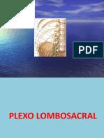 14a Aula Plexo Lombo-sacral