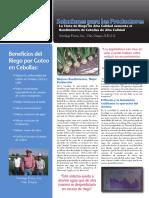 beneficios riego  por oteo en cebollas.pdf