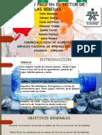 Presentacion SENA PDF