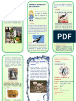 TRIPTICO animales en peligro de extincion.docx