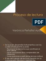 Proceso de Lectura Aula Virtual