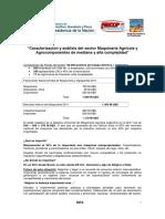 CaracterizacionAnalisisSectorMaquinariaAgricolaYAgrocomponentes