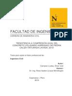Campos LLatas Elver Iván.pdf