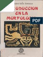 Introducción en La Morfología _Gustavo Solís Fonseca