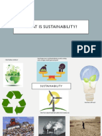 appendix 3 - what is sustainability presentation