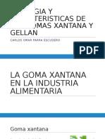 Reologia y Caracteristicas de Las Gomas Xantana y