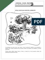 ciencia y ambiente.doc