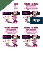 CUMPLE EMILIA 3.docx