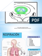 Clase Introduccion Cardiorespiratorio