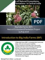 BIF Plantation Project 2016