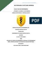 Proceso de Atencion de Enfermería Paciente en Dp - CNSR (1)