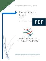 ENSAYO SOBRE LA OMC.docx
