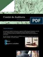 Comité de Auditoria