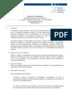 2017 TdR Coord Proyectos KAS