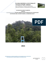 Declaracion de Impacto Ambiental Reforestacion Alto Pachiri