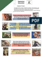 APA Newsletter  September Edition