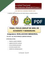 informe-FOCOUS-GROUPfinl