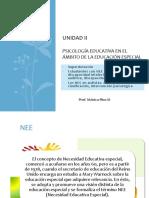 1. NEE1.Perú.pdf