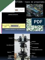 Mineralogia II - Aula 5 - Microscopia Optica LN - 2012-2
