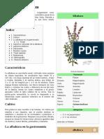 Ocimum_basilicum