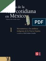 Historia de La Vida Cotidiana en México Vol 1
