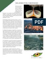 4 paginas