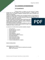 Plan de Cuidados Paciente Quirurgico_2010