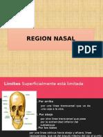 REGION NASAL-ANATO.pptx