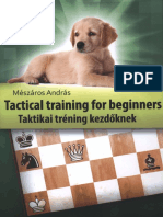 Andras Meszaros Tactical Training for Beginners