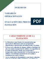 02_Flotacion.-.Conceptos_Basicos