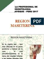 EXPOSICON REGION MESOTERIANA.pptx